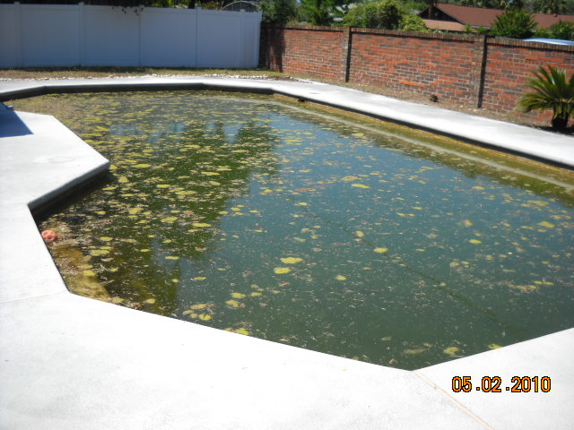 Pool 2 - Before.jpg