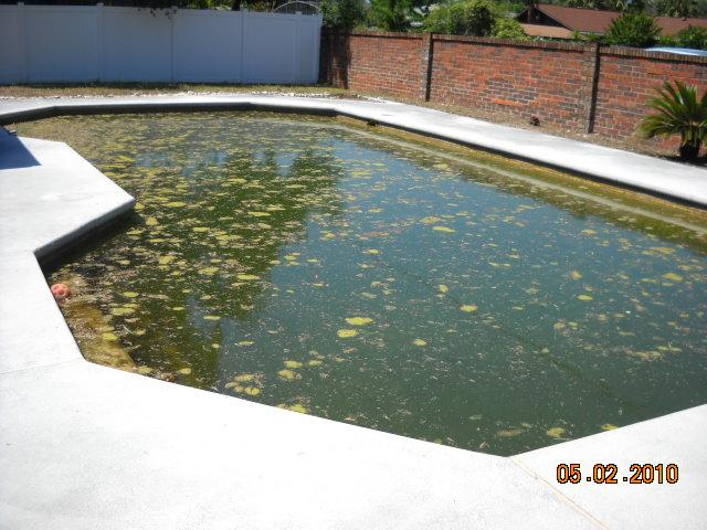 Pool 2 - Before.jpg